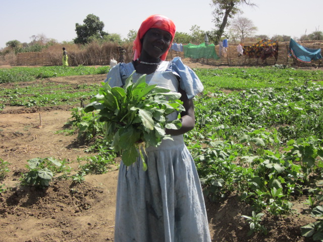 CRISTA Ministries | radish harvest from the vegetables